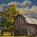 West Michigan Barn In Autumn by Randall Nyhof