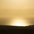 West Molokai Evening  by Kevin Smith