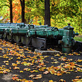 West Point Fall Leaves by Chris Augliera