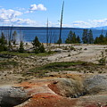 West Thumb Geyer At Yellowstone Lake by Christiane Schulze Art And Photography