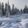 West Thumb Snow Pillows by Sandra Bronstein