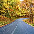 West Virginia Curves - In A Yellow Wood - Paint by Steve Harrington