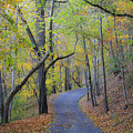 West Virginia Fall Scene by Teresa Mucha