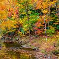 West Virginia Paradise by John M Bailey