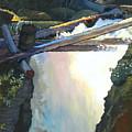 West Yaak Falls by Robert Bissett