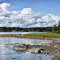 Western Bay - Oldhouse Cove Near Trenton Maine by Brendan Reals