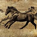 Western Flair by Steve McKinzie