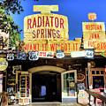 Western Junk Shop California Adventure  by Chuck Kuhn