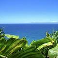 Western Shore Kauai by Ryan Crandall
