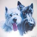 Westie And Scotty Dogs by Charmaine Zoe