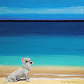 Westie White Dog On The Beach by Robyn Saunders