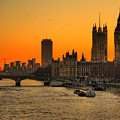 Westminster & Big Ben London by Photos By Steve Horsley