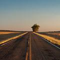 Westward Horizon by Julia McHugh