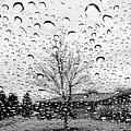 Wet Car Window B by John Myers