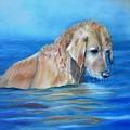 Wet Godden Retriever by Ceci Watson