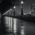 Wet Pathway by Andy Denial