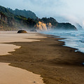 Wet Sand by Robert Potts