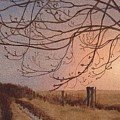 Wet Spring Soft Sunset  by Lynn ACourt