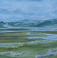 Wet Summer In Big Sky Country by Jenny Armitage