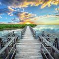 Wetland Marsh Sunrise Treasure Coast Florida Boardwalk A1 by Ricardos Creations