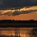 Wetland Sunset by Robert Coffey