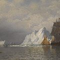 Whaler And Fishing Vessels Near The Coast Of Labrador by William Bradford