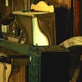 What We Saw In The Shed by RC DeWinter