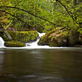 Whatcom Creek Gorge by Karen Ulvestad