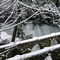 Whatcom Falls Winter 08 by Craig Perry-Ollila
