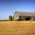 Wheat Field Barn by Joel Witmeyer