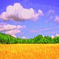 Wheat Field by Dominic Piperata