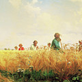 Wheat Field In The Summer by Georgiana Romanovna