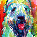 Wheaten Terrier Dog Portrait by Svetlana Novikova