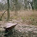Wheel Barrel In San Antonio by Kareem Farooq