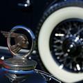 Wheel To Wheel by David Pettit