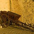 Wheelbarrow by Sebastian Musial