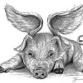 When Pigs Fly by J Ferwerda