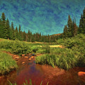 Where Brookies Swim by Todd Yoder