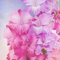Where Flowers Bloom - Flower Art by Jordan Blackstone