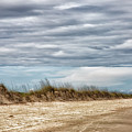 Where The Sea Turtles Nest by Christine Martin-Lizzul