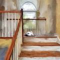 Where's Kitty by Lois Bryan