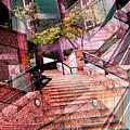 Which Way Up by Tim Allen