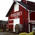 Whidbey Winery 1904 by Valerie  Moore
