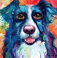 Whimsical Border Collie Dog Portrait by Svetlana Novikova