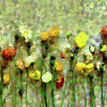 Whimsical Poppies On The Wall by Georgiana Romanovna