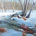 Whippany Brook In Winter by Laurie Paci