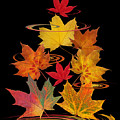 Whirling Autumn Leaves by Gill Billington