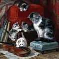 Whiskers And The Violin by Isabella Howard