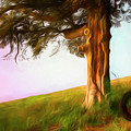 Whispers Of The Wind by Debra and Dave Vanderlaan