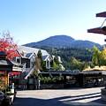Whistler Mountain by Will Borden